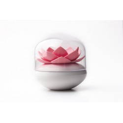 Qualy Lotus Cotton Bud Holder - Pink